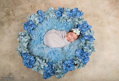 ניו בורן בסלסלה עם פרחים בגווני תכלת