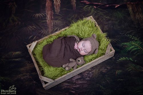 תינוק עטוף שוכב בתיבה דובון ביער הקסום