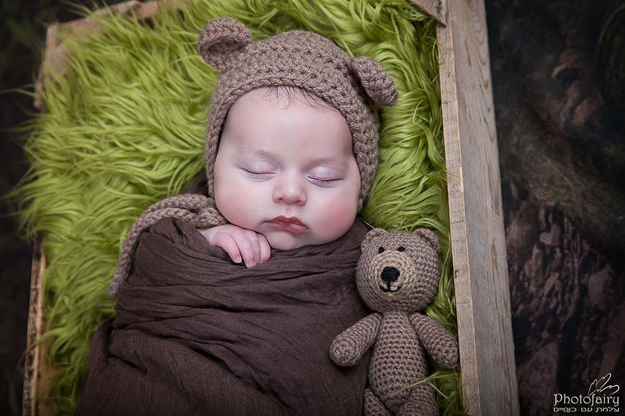 תינוק דובון ביער