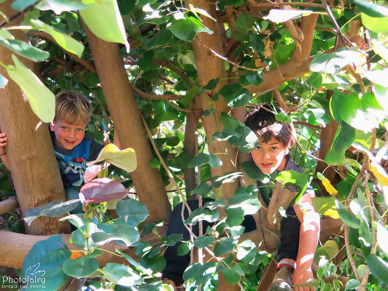 צילומי ילדים בטבע בגנון טבעי